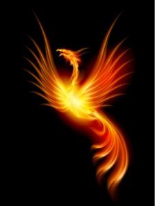 renaissance phoenix 226x300 Le jour de ma Renaissance, le 5 juillet 2010