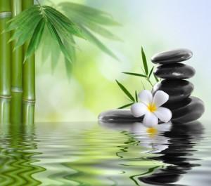habitudes zen 300x265 Comment être Zen en adoptant 3 habitudes incontournables ?